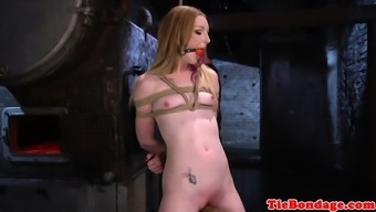 Tattooed bdsm sub toyed using dildo stick