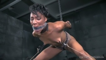 Dark skin hot chick is simmered in her own BDSM sweat